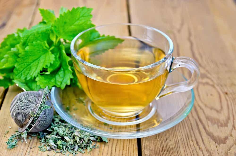 melisa para cuidar la tiroides