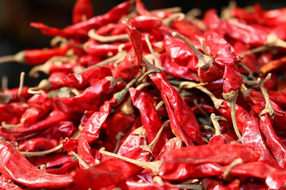 Dried Red Chillies At Johdpur Market