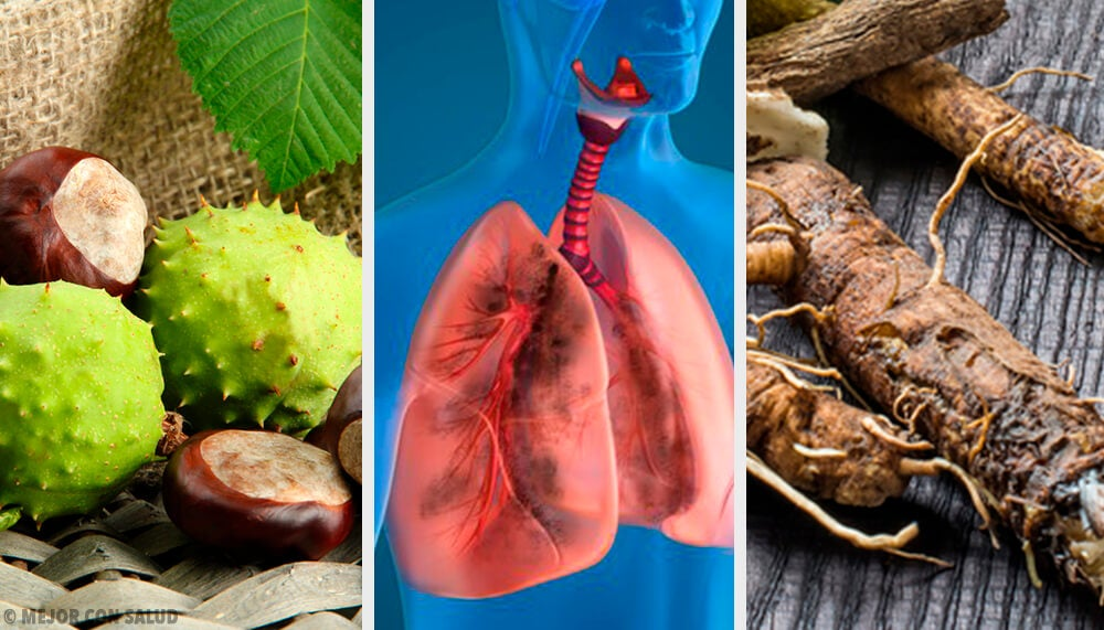 4 remedios caseros para fortalecer tus pulmones y respirar mejor