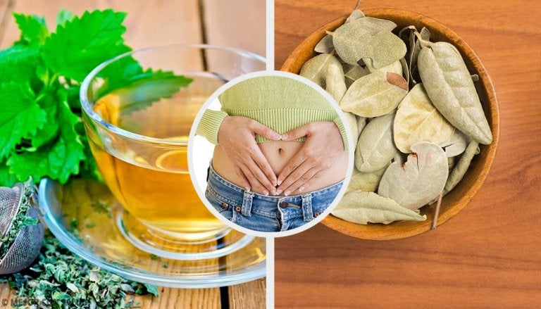 5 hierbas que ayudan a mejorar problemas digestivos