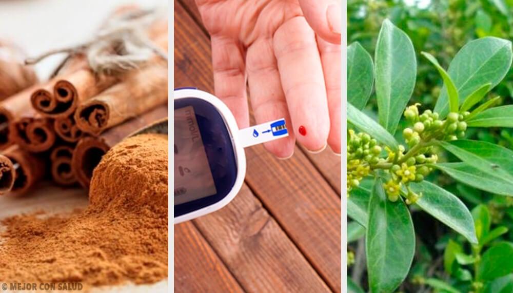5 plantas medicinales que ayudan a controlar la diabetes