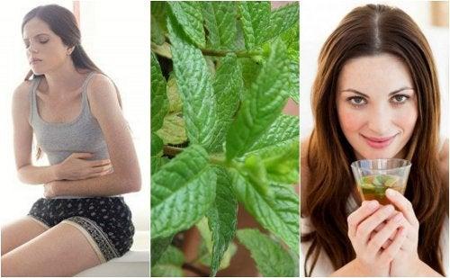 5 remedios caseros con menta que te gustará conocer