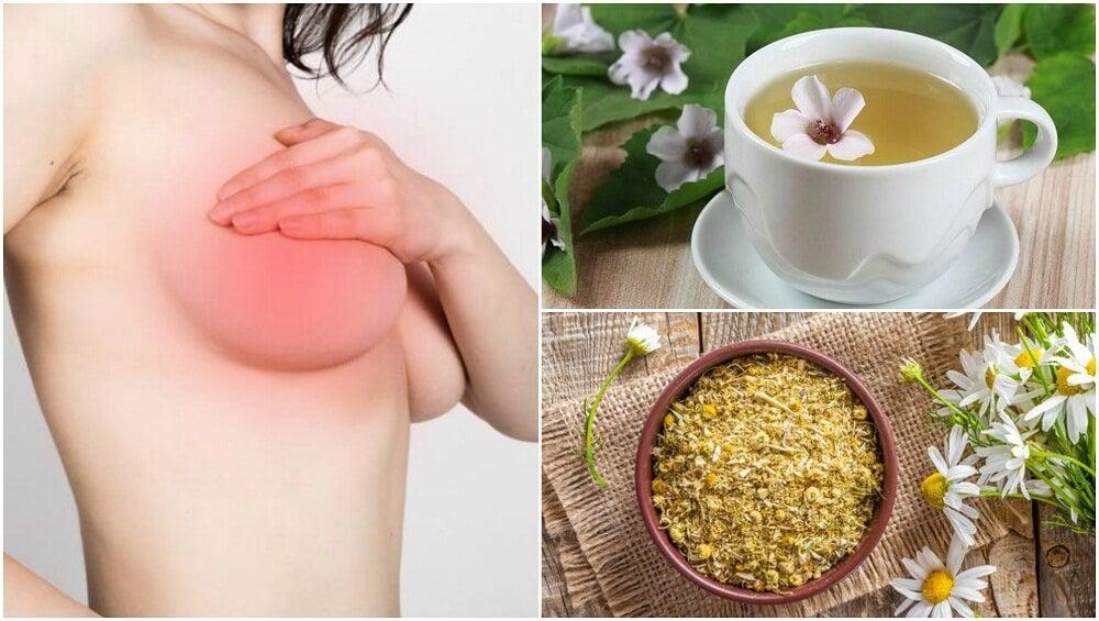 5 remedios de origen natural para calmar el dolor en los senos