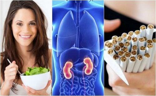 6 cuidados básicos para proteger la salud de tus riñones