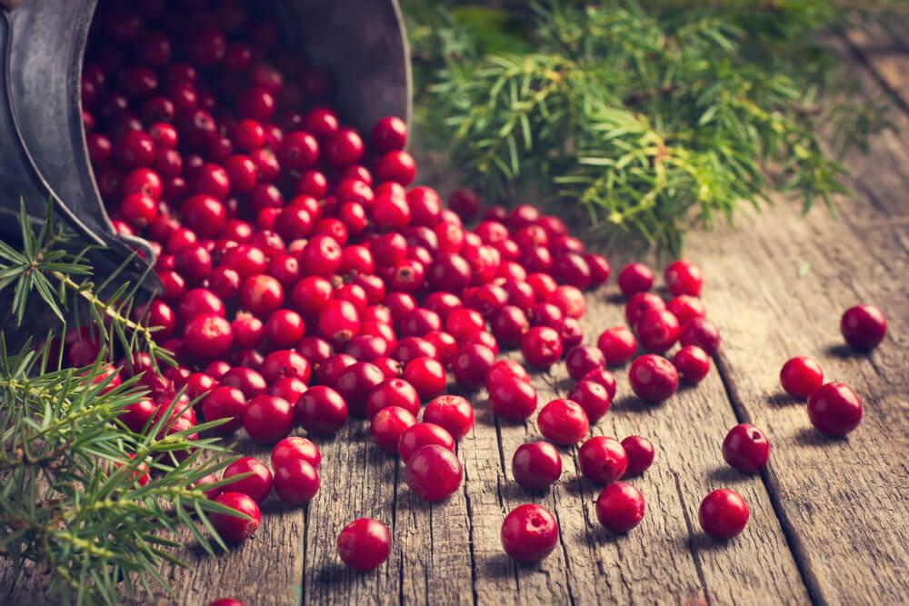 Beneficios de los arándanos para tu salud