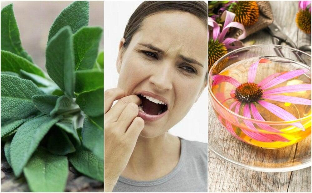 Cómo combatir la gingivitis con 5 remedios de origen natural