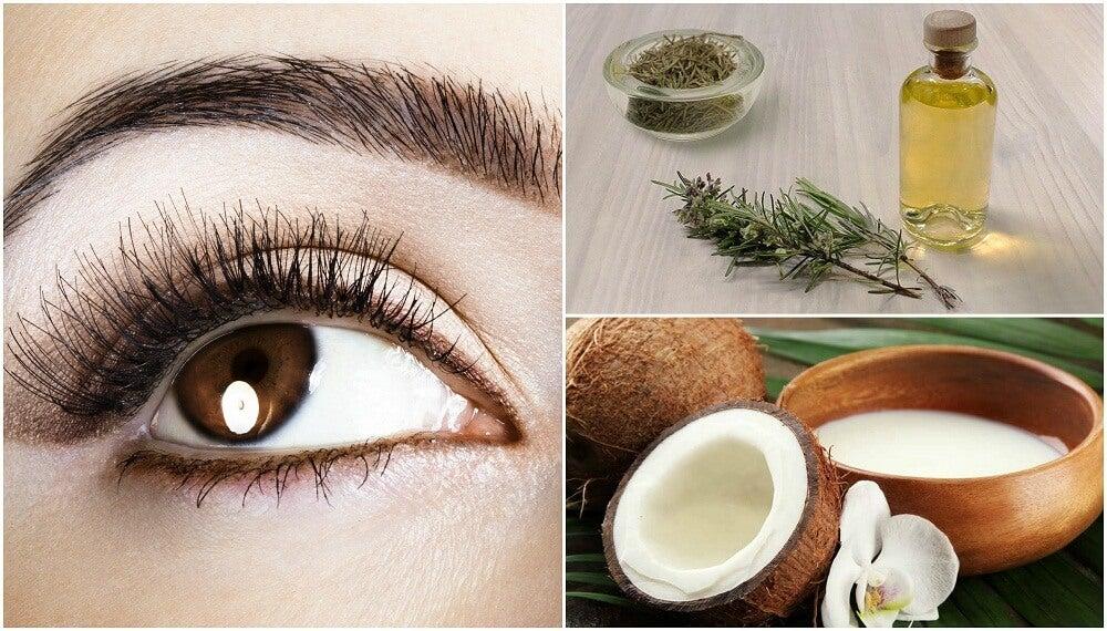 Cómo preparar 5 tratamientos cosméticos para engrosar tus cejas