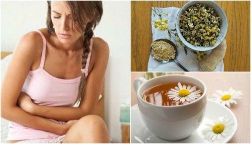 Cómo tratar el síndrome del intestino irritable con una infusión de jengibre y manzanilla
