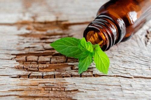 Efectos calmantes, adelgazantes y de curación de heridas