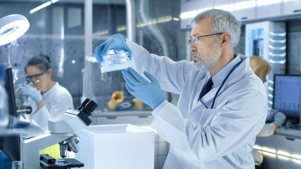 El desarrollo de técnicas de ingeniería genética