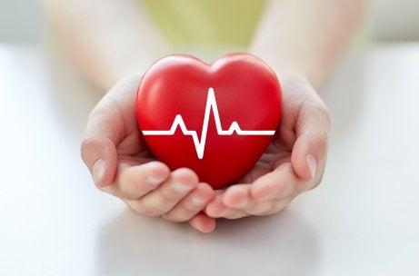 Las 8 afecciones cardiacas más comunes
