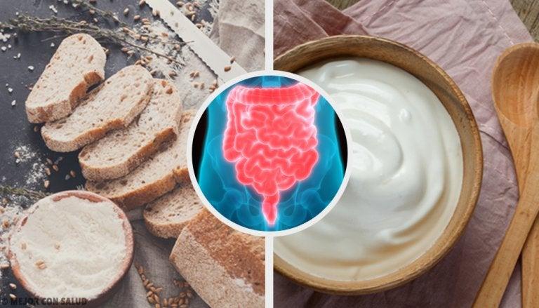Los 3 pasos imprescindibles para tener un intestino saludable