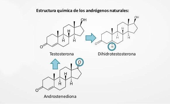 Otros tipos de andrógenos