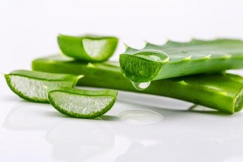 Aloe vera para la nutrición del cabello