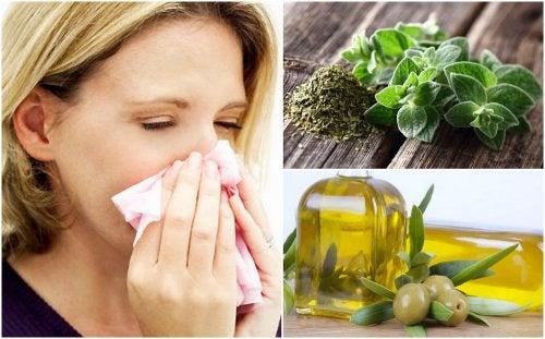Protege tu sistema respiratorio con este remedio de orégano y aceite de oliva