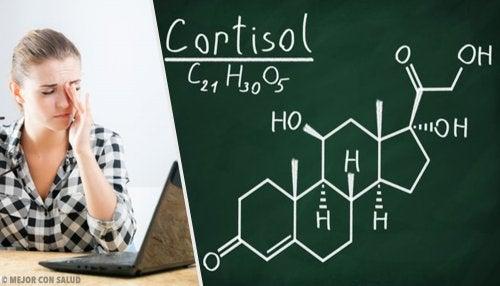 Remedios naturales contra el cortisol alto