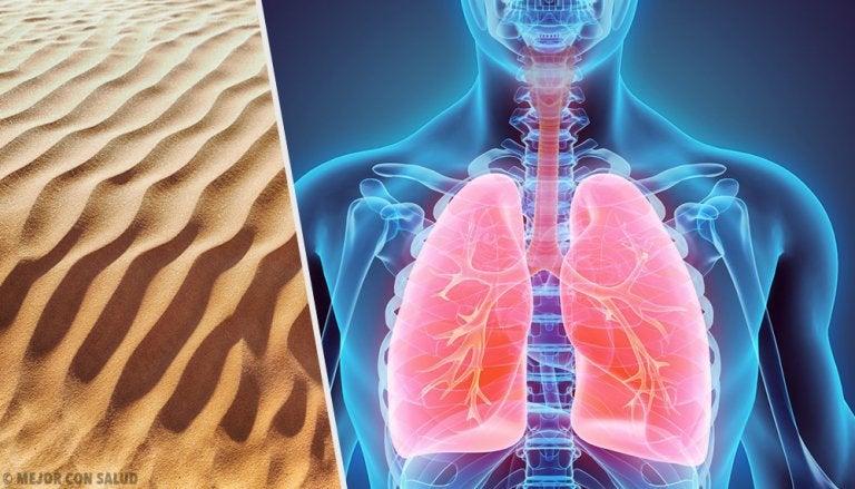 Silicosis: la enfermedad pulmonar por polvo de sílice