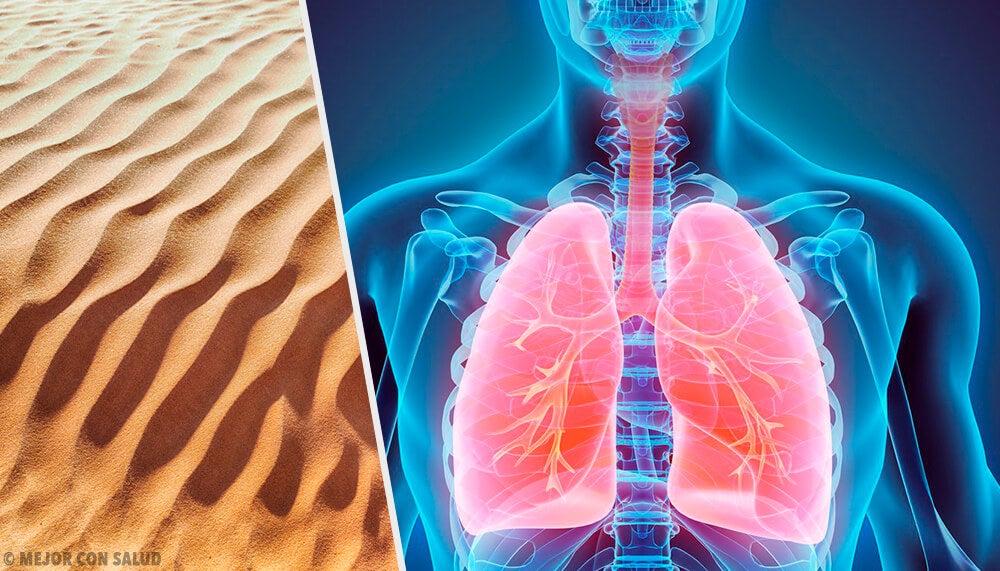 Silicosis: la enfermedad por polvo de sílice