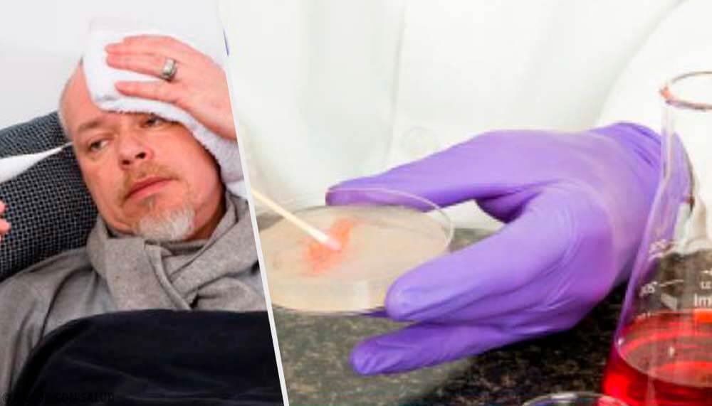 Tratamiento para la brucelosis