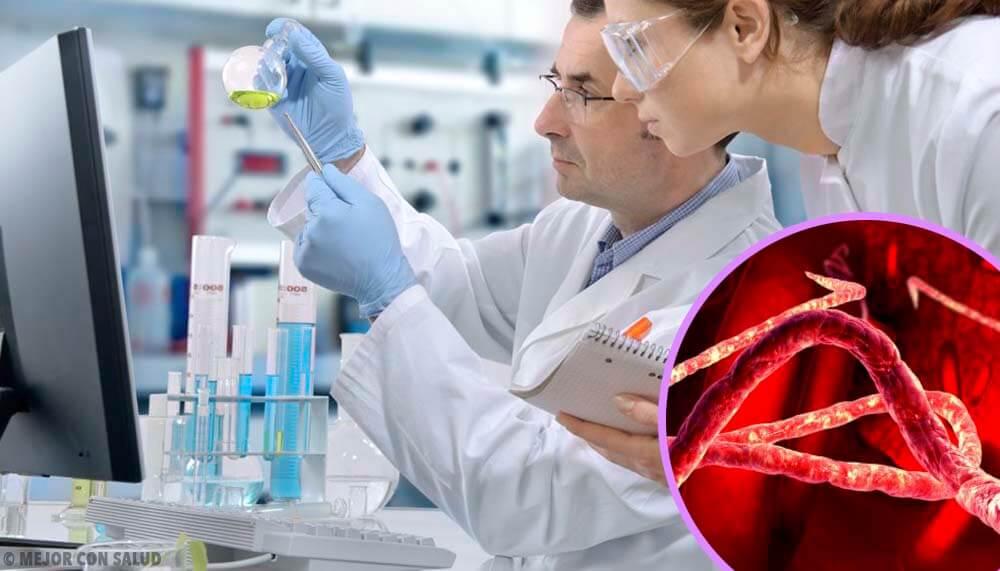 Tratamiento del Ébola