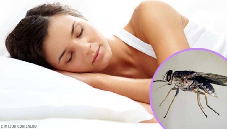 Tripanosomiasis africana: la enfermedad del sueño