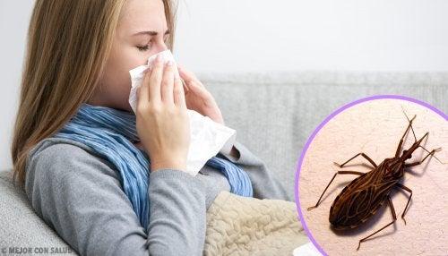 Tripanosomiasis americana: la enfermedad de Chagas