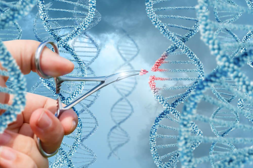 Utilidad terapéutica de la clonación