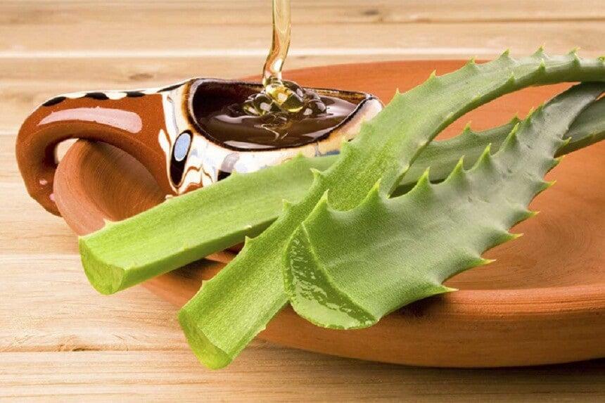 Aloe vera y miel para reducir cicatrices