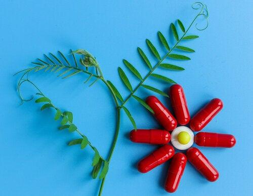 4 beneficios y usos de la berberina