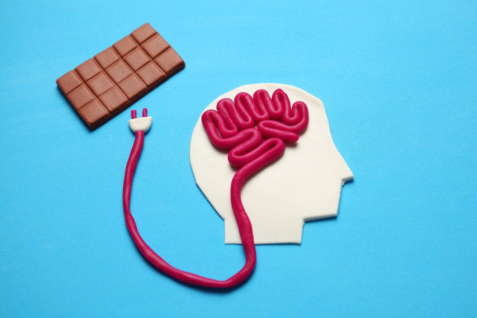 Le chocolat est bon pour le cerveau.