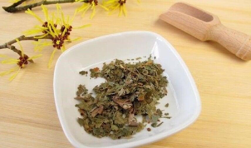 hamamelis cura rasguños en la piel