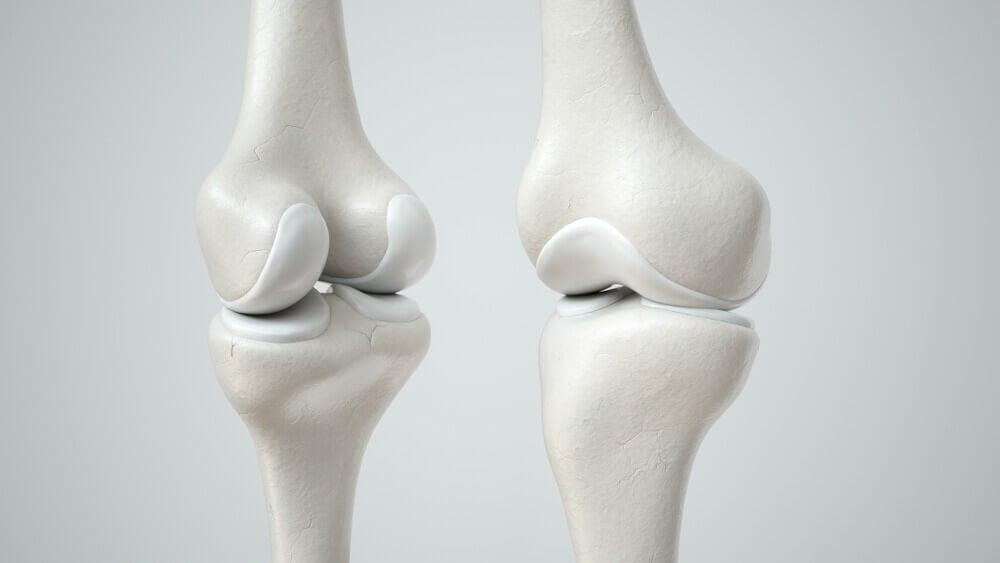 El óxido nítrico tiene un papel en el sistema óseo.