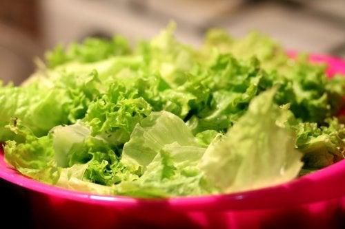 Los vegetales de tallo y hoja verde como la lechuga se admiten en la dieta lipofídica.