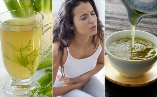 5 infusiones de plantas para combatir la indigestión