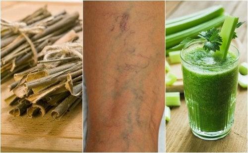 5 plantas que ayudan a combatir la mala circulación sanguínea