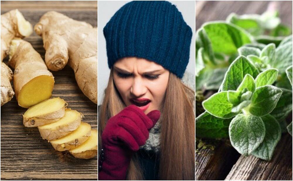 5 remedios con plantas que te ayudan a expulsar las flemas