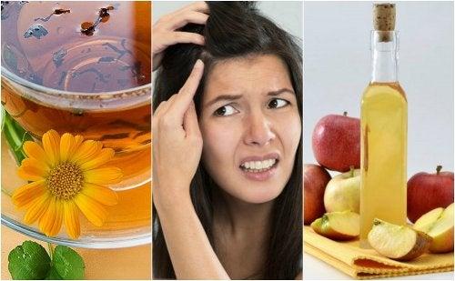 5 remedios naturales para el cuero cabelludo sensible