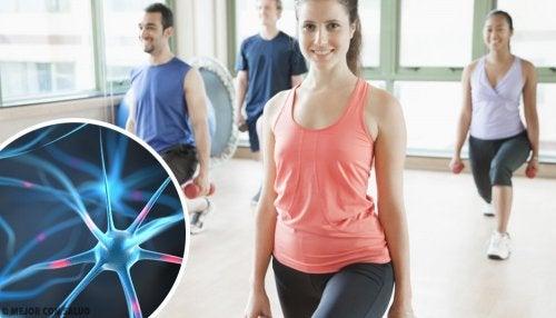 6 hábitos recomendados para regenerar las neuronas