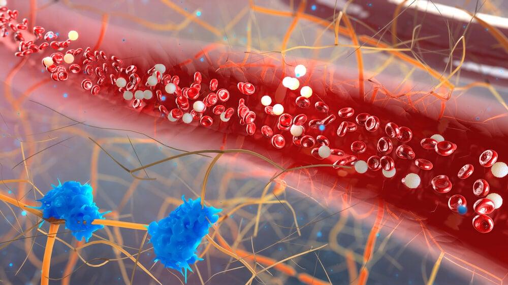 Acciones metabólicas