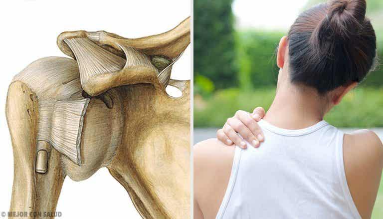 Articulación del hombro