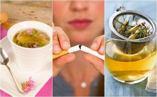 Cómo calmar la ansiedad del tabaco con 5 infusiones de plantas