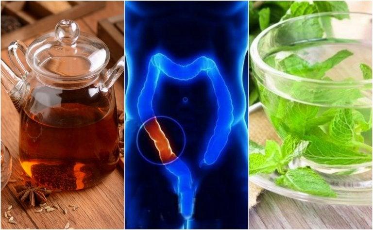 Cómo preparar 5 infusiones medicinales para limpiar el colon naturalmente