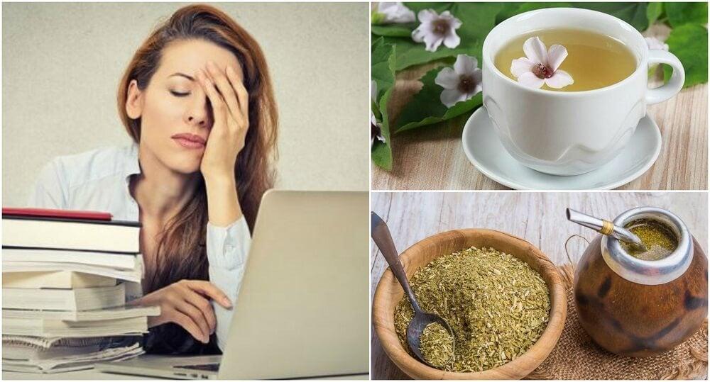 Cómo preparar 5 remedios herbales para mejorar la concentración