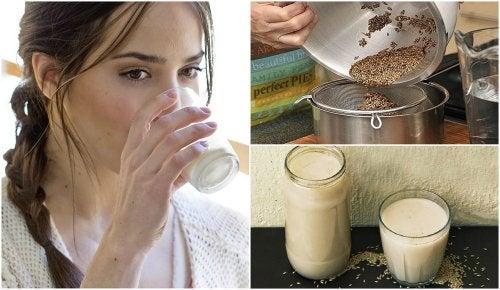 Receta de leche de alpiste para adelgazar
