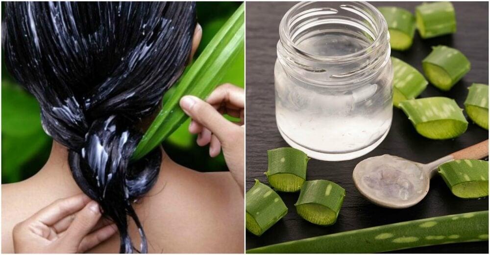 Cómo tener un cabello más saludable utilizando aloe vera