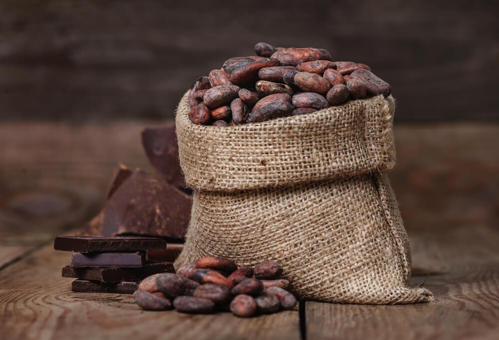 Cacao para combatir el frío