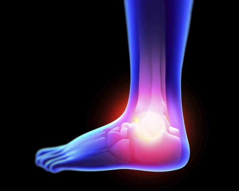 Características de la articulación del tobillo
