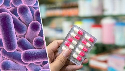 Cloranfenicol: qué es y cómo actúa