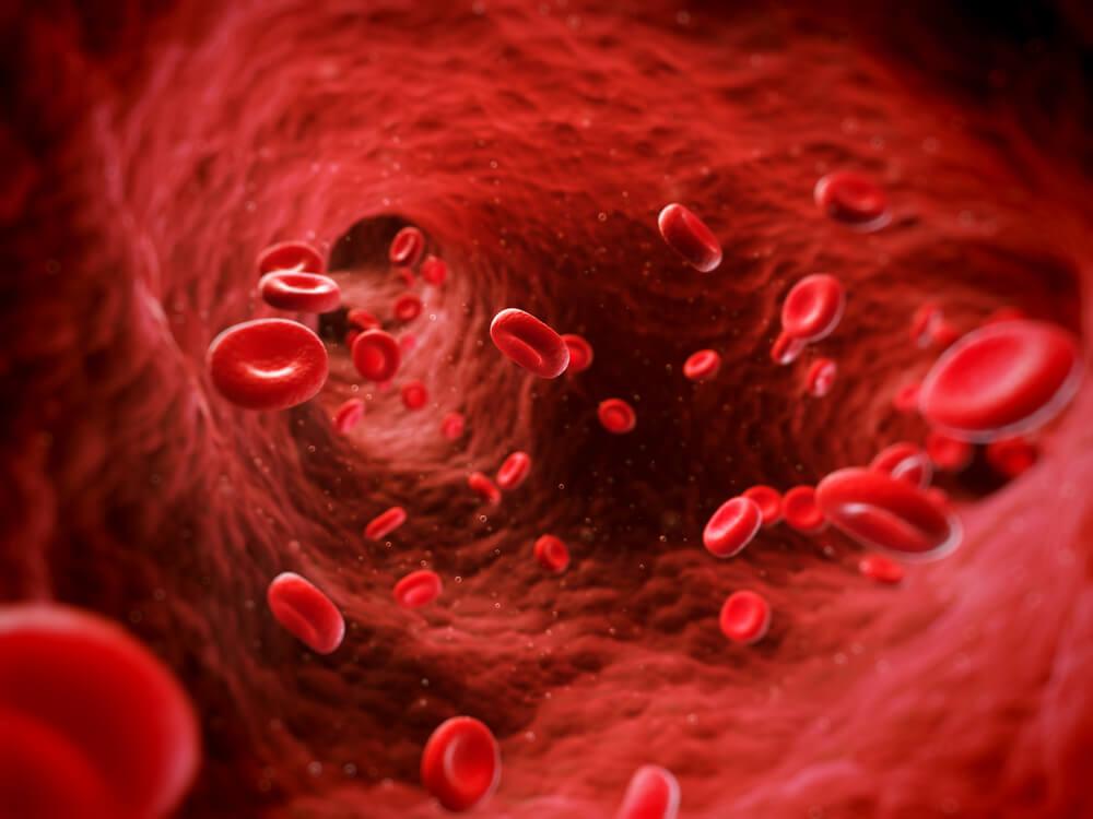 Eritropoyetina: qué es y cuál es su función