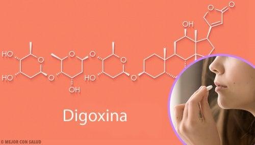 Digoxina: mecanismo de acción y aplicaciones